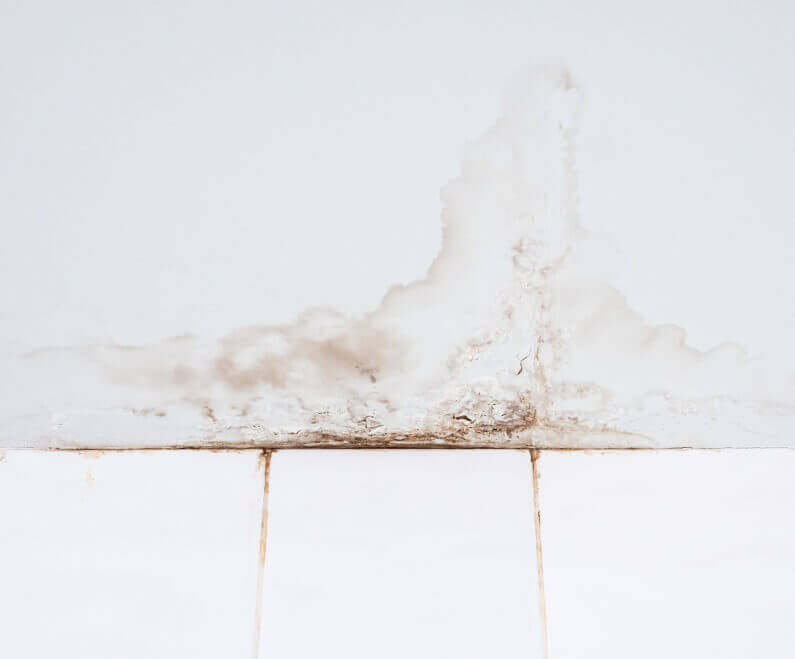 8 Common Causes of Home Water Damage